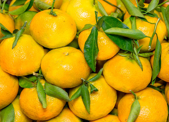 Tangerines with leaves in the market