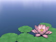 Lotus flower and leaves on water - 3D render
