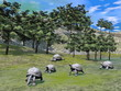 Galapagos tortoises in nature - 3D render