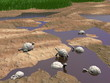 Galapagos tortoises relaxing - 3D render