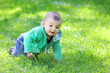 Little boy playing on the meadow.