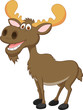 Moose cartoon