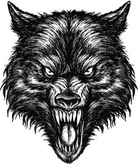Hand Drawn Wolf Illustration Vector