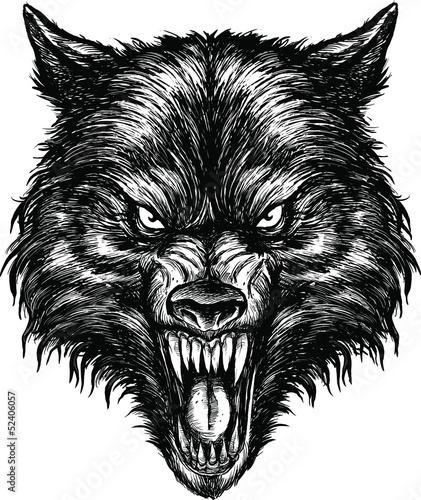 hand-gezeichneter-wolf-illustrations-vektor