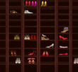 Wardrobe. Brown Wood Shelves with Women's Shoes. Fashion