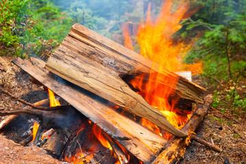 closeup campfire