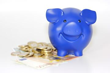 Blaues Schwein  steht auf Geld