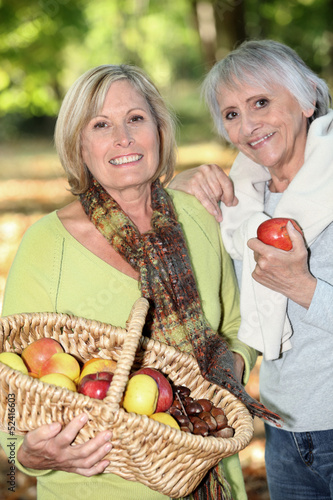 Women gathering chestnuts and apples