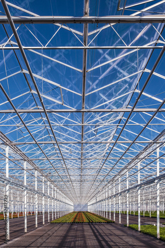Partly empty greenhouse against a blue sky