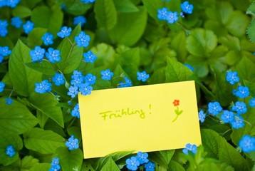 Frühlingsbotschaft zwischen Gedenkemein