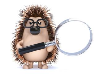 Cute hedgehog has a magnifier