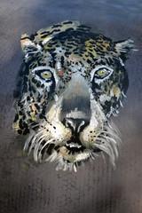 Art urbain - Tigre