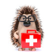 Cute hedgehog administers first aid