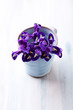 Iris flowers in a blue cup