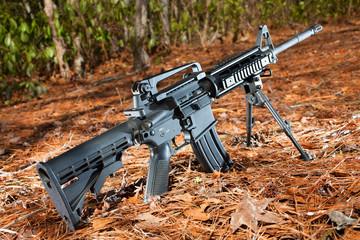 Modern sporting rifle
