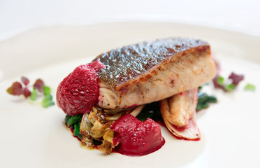 Black cod fillet witt chicory and beetroot juice froth