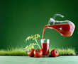 fresh tomato juice on a background of grass