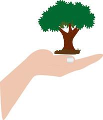 mano con albero