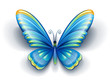blue butterfly insect with color wings - EPS10 vector