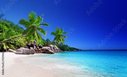 beach at Praslin island  Seychelles