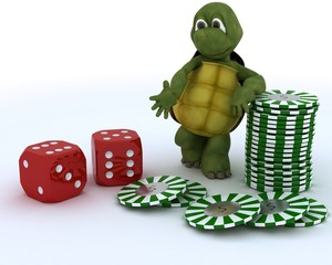 tortoise with casino dice and chips