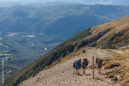 walkers descending into valley in Nelson Lakes National Park