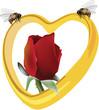 cuore di miele