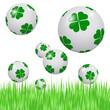 Boules porte-bonheur dans un champ d'herbe