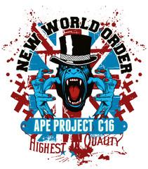 Ape project C16