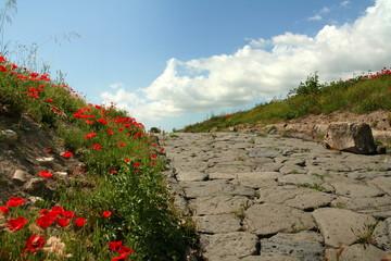 Strada etrusca