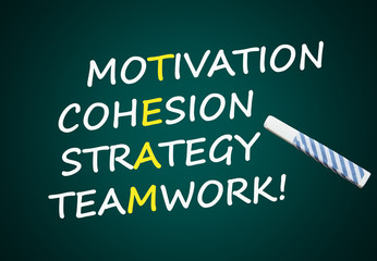 Team: Motivation, Cohesion, Strategy, Teamwork