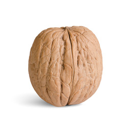 one walnut