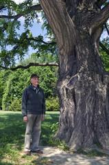 Senior under a huge gingko biloba tree