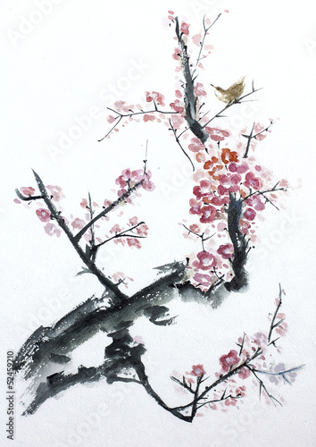 Wall mural plum tree blossom