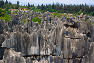 Shilin Stone Forest National Park. Kunming. China.