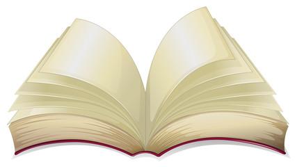 An empty book