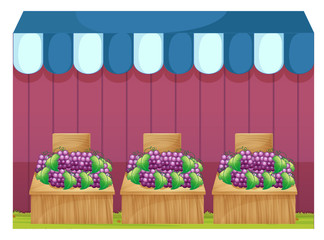 Fruit stands with grapes