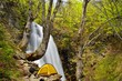 森と渓流のキャンプ風景