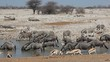 Wildlife gathering at a waterhole, Etosha National Park