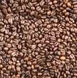Coffee bean surface as a seamless background