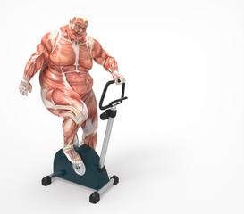 Anatomía  Hombre haciendo deporte