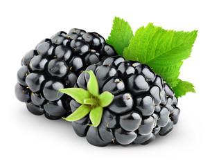 Fresh blackberries isolated on white