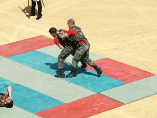 Artes marciales  Guardia Real 3