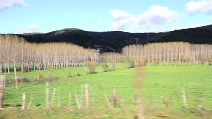 Traveling de paisaje de prados desde coche