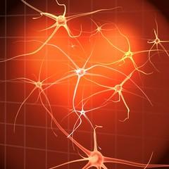 Células nerviosas