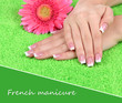 Woman hands with french manicure and flower on green towel