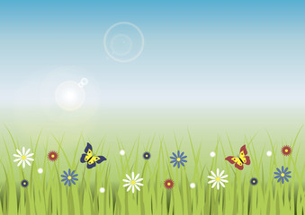 Floral meadow with grass, flowers and butterflies.