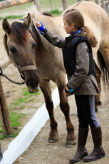 Horse and lovely equestrian girl, care for a horse