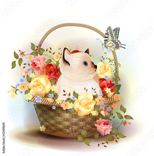 Illustration of  the siamese kitten sitting in a basket with ros