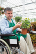 Man in wheelchair holding potted plant in garden center